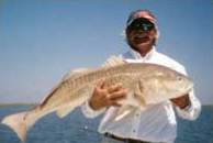 Captain Fred Winters with Redfish Catch